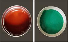 环氧玻璃鳞片涂料面漆价格表